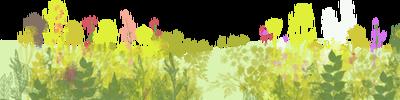 """影响世界的中国植物  ——尚德航头校区""""根系文化""""跨学科综合探究课程(二)图片_91343852333181432387730302044767688728495783935"""