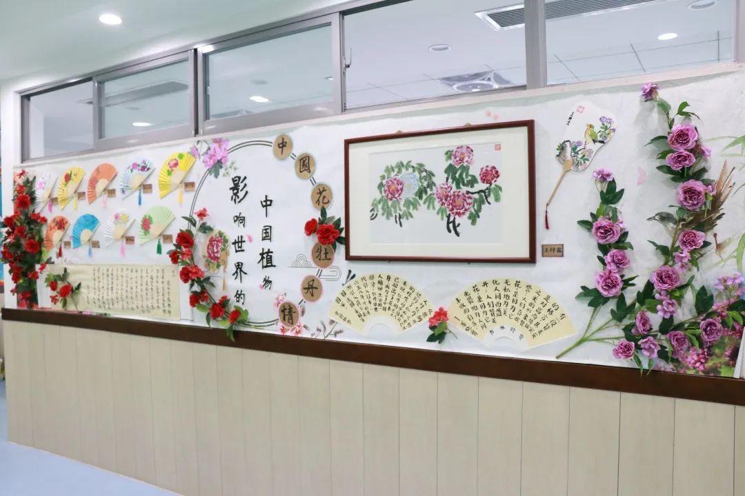 """影响世界的中国植物  ——尚德航头校区""""根系文化""""跨学科综合探究课程(二)图片_31"""