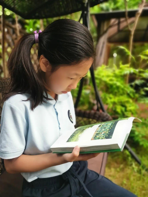 """影响世界的中国植物  ——尚德航头校区""""根系文化""""跨学科综合探究课程(二)图片_5070602400912917605986812821503"""