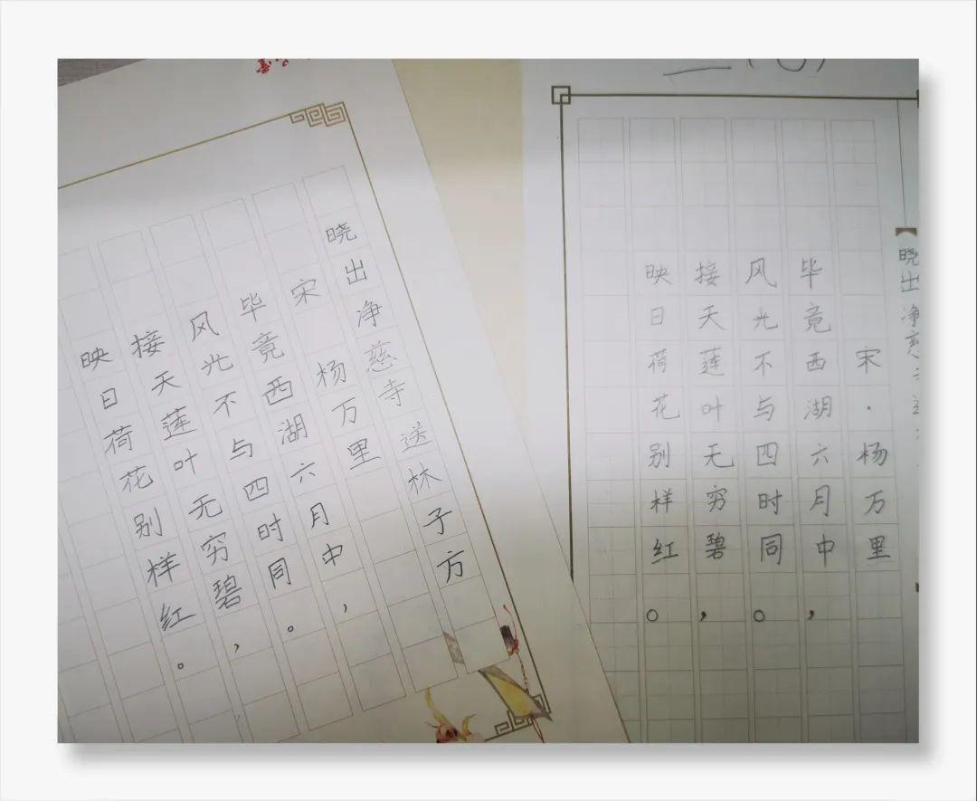 """影响世界的中国植物  ——尚德航头校区""""根系文化""""跨学科综合探究课程(二)图片_9444732965739290427391"""
