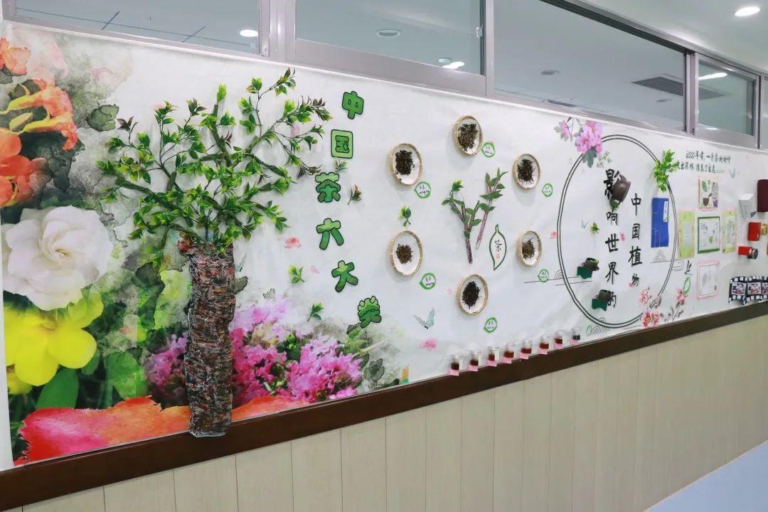"""影响世界的中国植物  ——尚德航头校区""""根系文化""""跨学科综合探究课程(二)图片_63"""