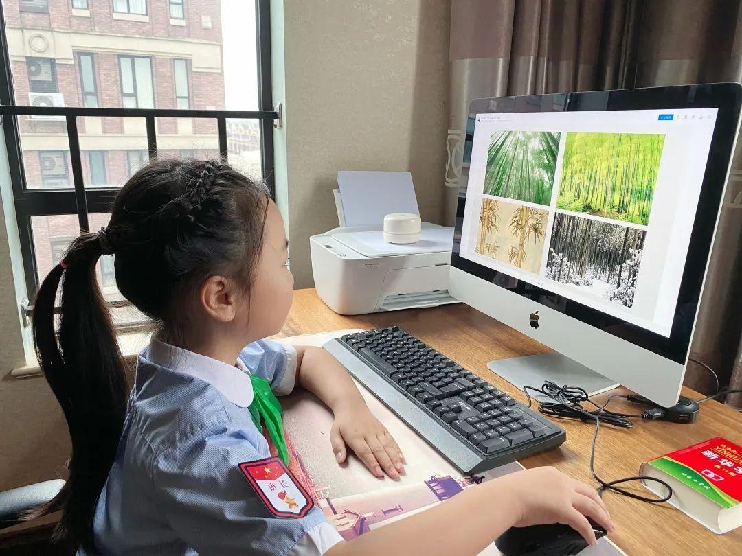 """影响世界的中国植物  ——尚德航头校区""""根系文化""""跨学科综合探究课程(二)图片_40564819207303340847894502572031"""