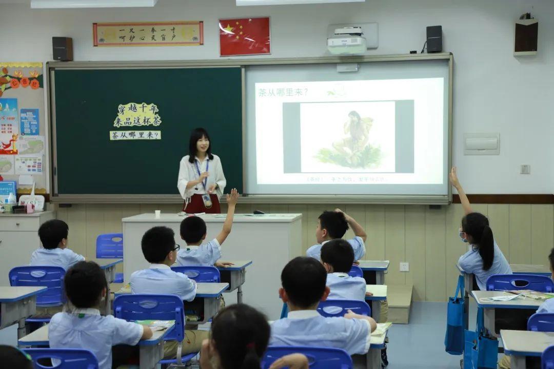 """影响世界的中国植物  ——尚德航头校区""""根系文化""""跨学科综合探究课程(二)图片_4835703278458516698824703"""