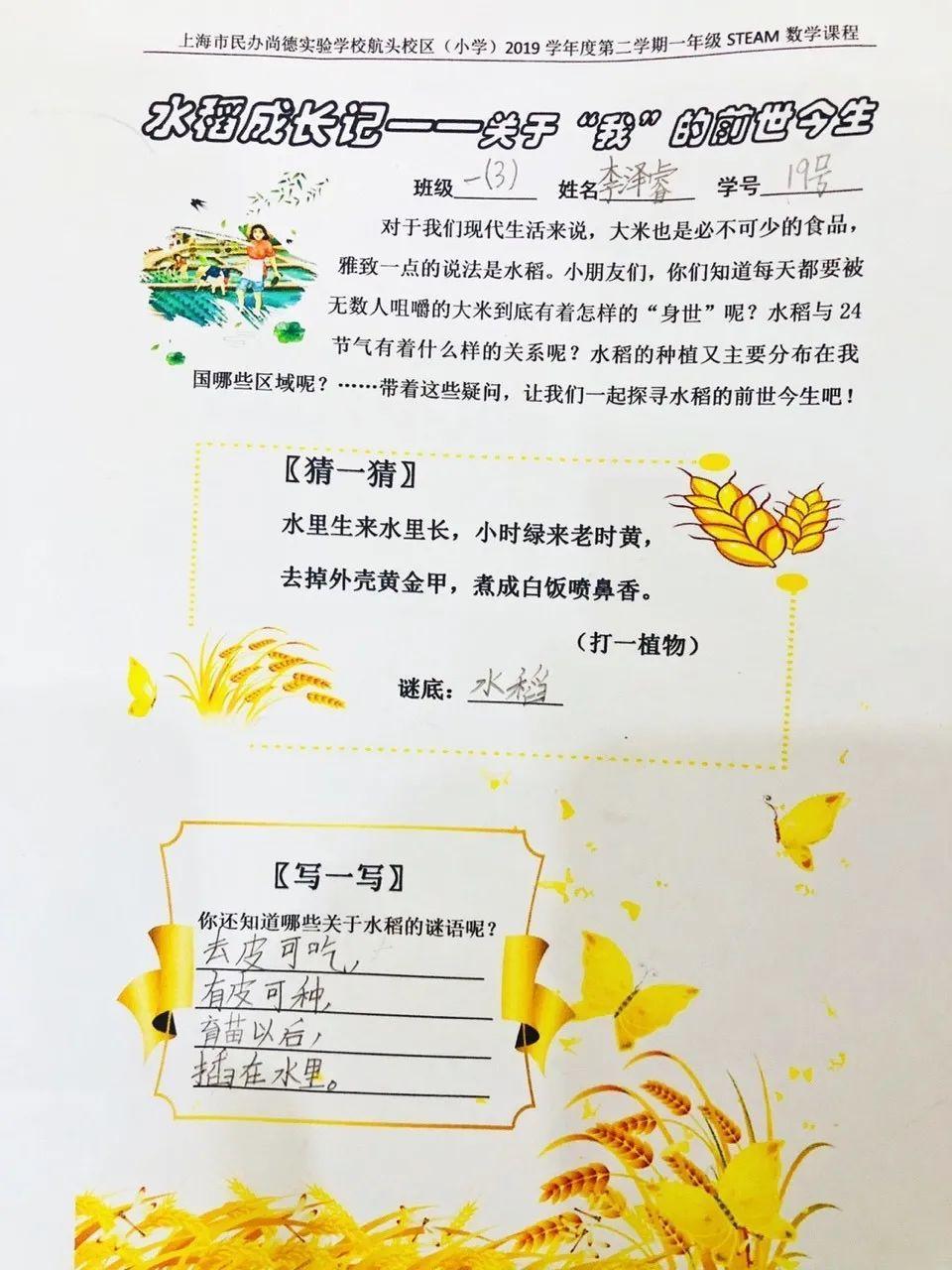 """影响世界的中国植物  ——尚德航头校区""""根系文化""""跨学科综合探究课程(二)图片_8191"""