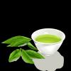 """影响世界的中国植物  ——尚德航头校区""""根系文化""""跨学科综合探究课程(二)图片_2417851639229258349412351"""