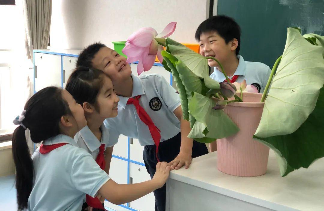 """影响世界的中国植物  ——尚德航头校区""""根系文化""""跨学科综合探究课程(二)图片_144115188075855871"""