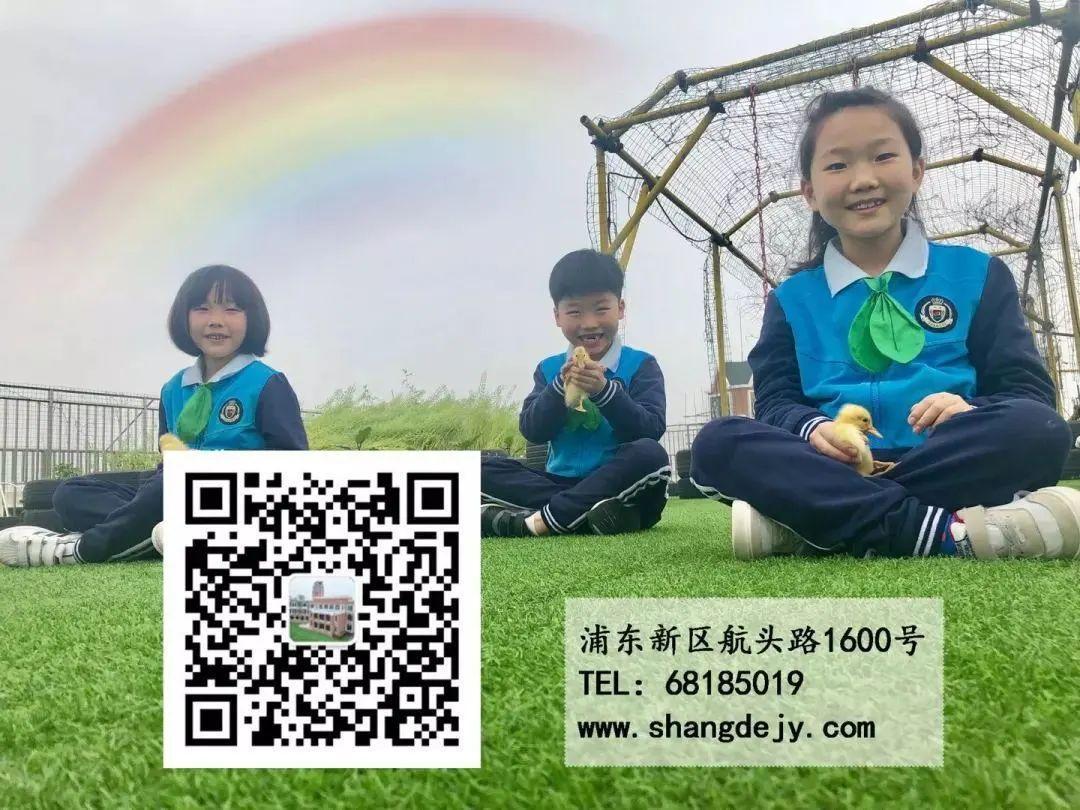 """影响世界的中国植物  ——尚德航头校区""""根系文化""""跨学科综合探究课程(二)图片_182687704666362864775460604089535377456991567871"""
