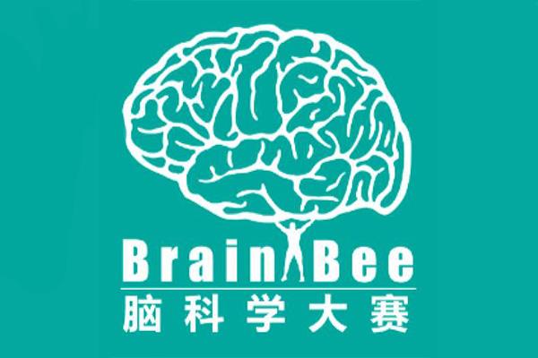 想斩获牛剑offer?你一定要知道Brain Bee 脑科学大赛内容图片_2