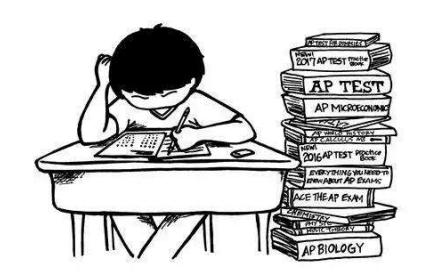 "2021AP考试怎么选课 抱紧""五分为王""原则内容图片_1"