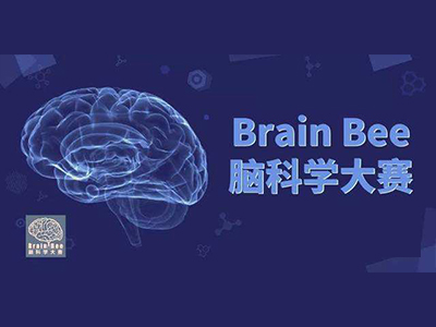 2021BrainBee报名已开放 5-12年级学生均可参赛