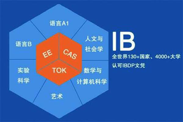 IB中文essay写作方法 这个类别可是同学在考试时需要特别注意德的内容图片_1