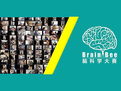 Brain Bee脑科学大赛如何准备?让前2%获奖选手告诉你