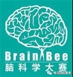 BrainBee脑科学大赛如何准备?获奖者强调把书读细很重要内容图片_3