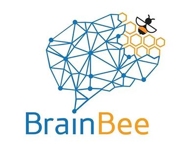 2022年Brain Bee大赛参赛指南分享  还有Junior版5年级学生就可参加哦内容图片_2